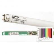 LAMPADA GRO-LUX MD PACK watt.30 cm.90