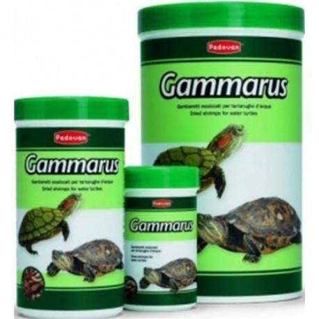 PADOVAN - GAMMARUS 100 ml 12gr tartarughe