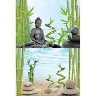 TETRA - Poster AquaArt 60x45 Buddha&Bamboo