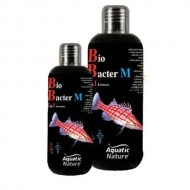 A.N. - BIO-BACTER 2 in 1 'M' 300 ml Batteri MARINO