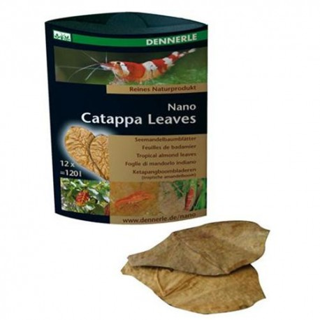 DENNERLE - Nano Catappa Leaves