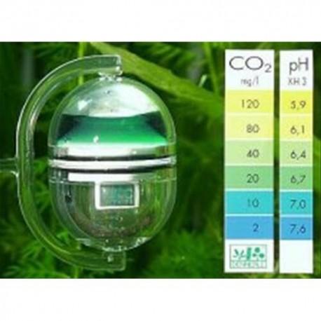DENNERLE - TEST CO2 A LUNGA DURATA CORRECT + PH
